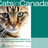 CFHS releases report on cat overpopulation