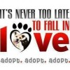 City of Laval Adoption Fair