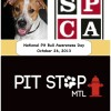 The Montreal SPCA and Pit Stop Montreal celebrate National Pit Bull Awareness Day
