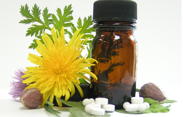 Ask A Vet: Herbal Supplements for Kidney Issues