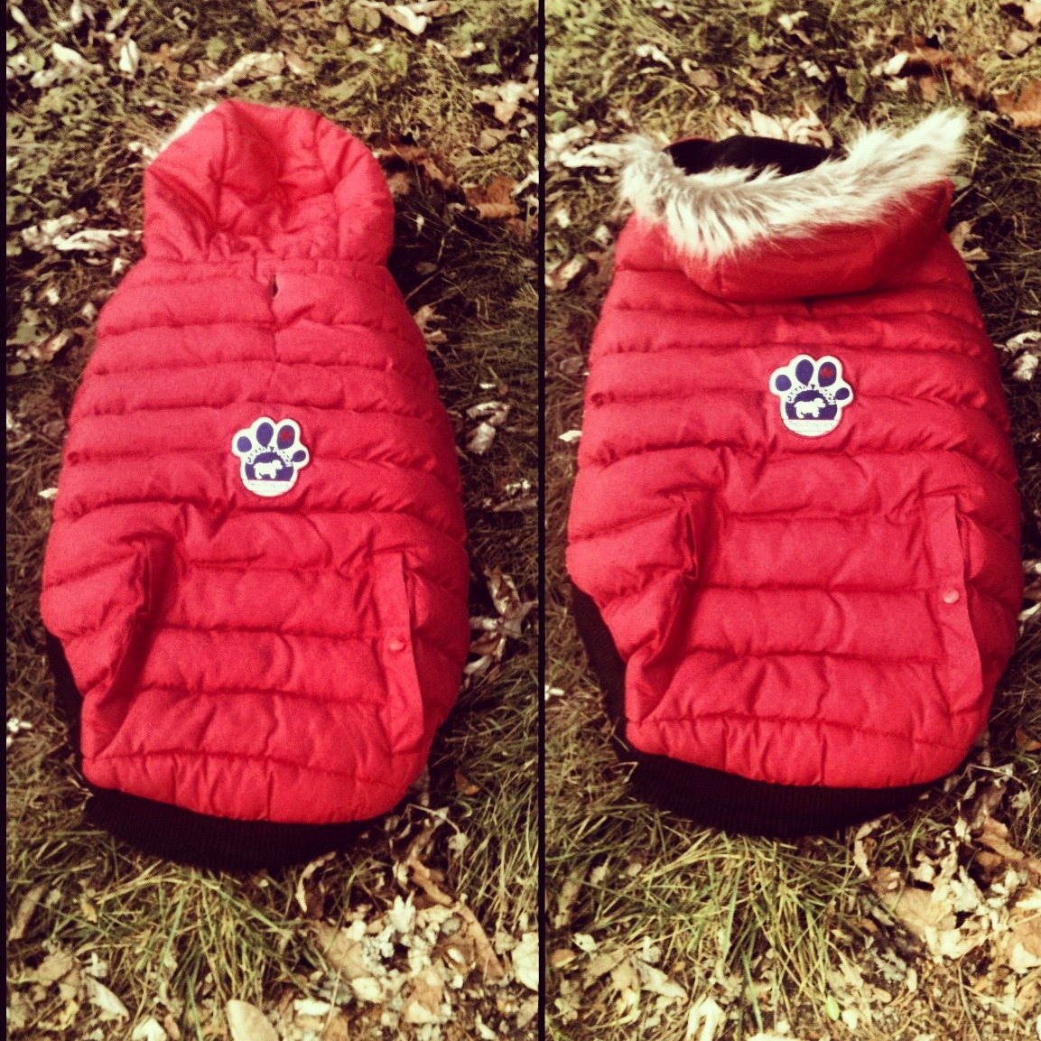 ... recognizing that once a dog starts moving he's gonna move in every which way. These jackets keep movement unrestricted, keeping your furry loves' stress ...