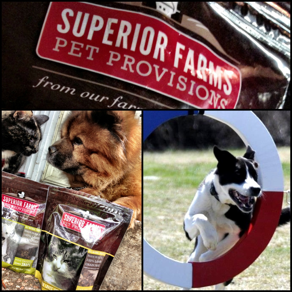 Product Review: Superior Farms Pet Provisions
