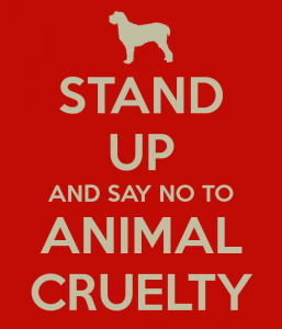 stand-up-and-say-no-to-animal-cruelty
