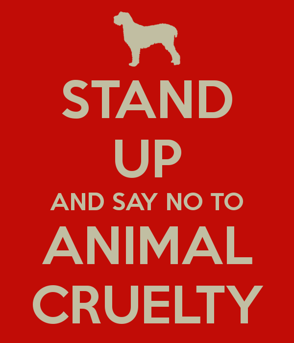 the abuse of language in animal Cruelty to animals, also called animal abuse, animal neglect or animal cruelty, is the infliction by omission (animal neglect) or by commission by humans of suffering or harm upon any non-human more narrowly, it can be the causing of harm or suffering for specific achievement, such as killing animals for food or for their fur  opinions differ.