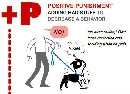 Examples Of Negative Punishment In Dog Training