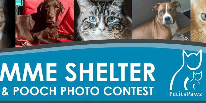 Photo Contest Banner