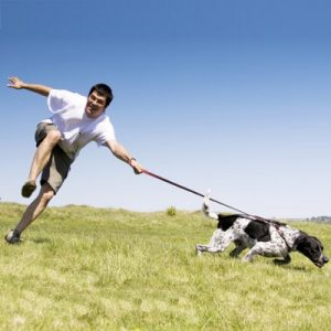 dog_pulling_on_leash_article_thumbnail